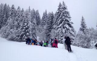 Schneeschuhwanderung Lenk